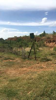 Prime land for sale in Nanyuki Muthaiga image 3