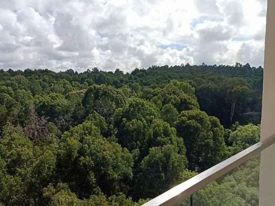 3 bedroom apartment for rent in Spring Valley image 11