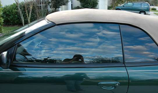 Professional Window Tinting Services | Mobile Window Tinting Service image 4