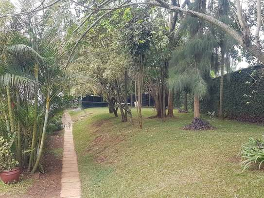 3 bedroom townhouse for rent in Lavington image 9