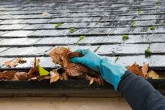 Gutter Cleaning and Repair Services image 2