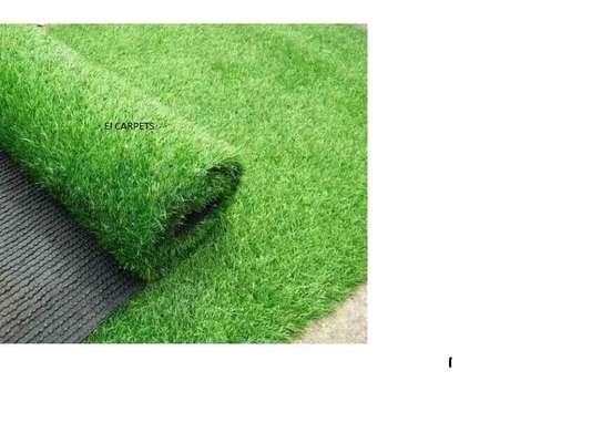 GRASS CARPET GRASS image 5