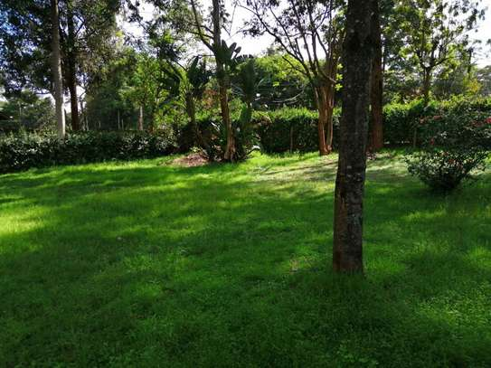 Lavington - Commercial Land, Land, Residential Land image 2