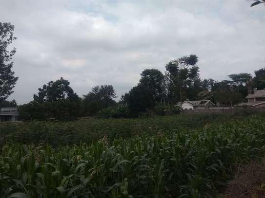 Runda - Land, Residential Land image 9