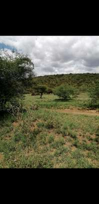 Land for sale 50 acres