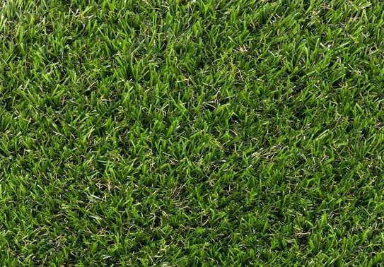 grass carpet influence on beauty and texture image 8
