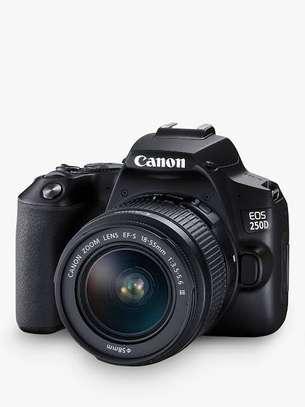 Canon EOS 250D image 3