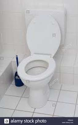 Toilet bowl cleaning image 2
