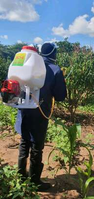 motorized sprayer image 3