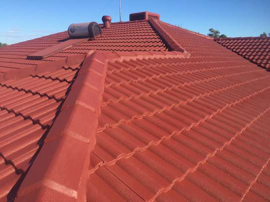 Roof Repairs | Ceiling Repairs | Ceiling Replacement | Top-Rated Roof Repair Contractors.Call Now image 15