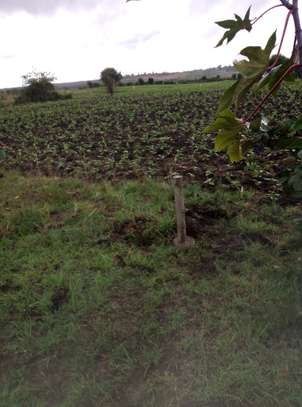 Half (1/2) Acre Prime Land, Residential, Near Kabati