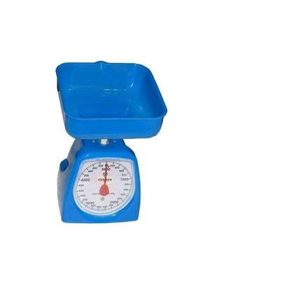 Sterling Mini Kitchen Scale - Blue.