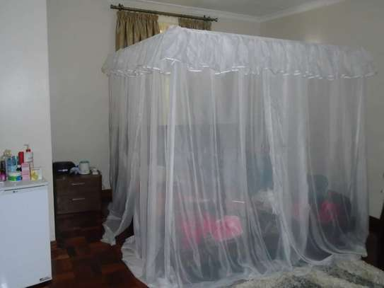 Front Canopy Shears Mosquito Net