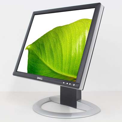 17-Inch Dell  DVI LCD Monitor With USB Hub (Black & Silver)