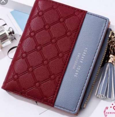 Small classy ladies wallets