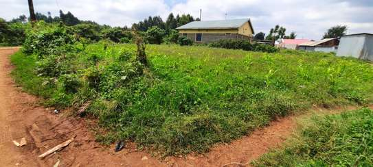 50 by 100 plot in cura, kikuyu