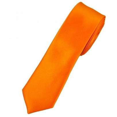 Men's Women Satin Neck Tie - Orange - One size
