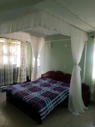 Custom Made Rail Shears Mosquito Nets image 2