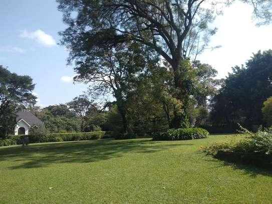 Thigiri - House, Bungalow image 1