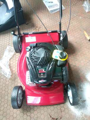 Lawnmower Briggs and Stratton image 1