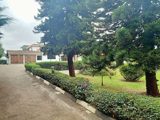 commercial property for rent in Gigiri image 13