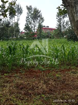 0.1 ha commercial land for sale in Kinoo image 4