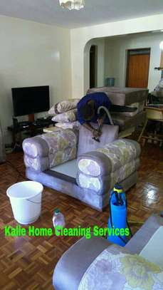 Sofa Cleaning image 4