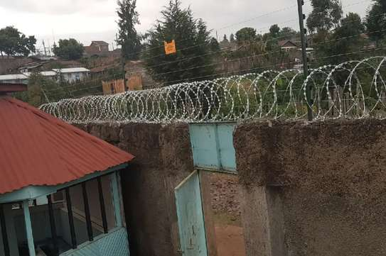 Wall Mount Electric Fencing image 1