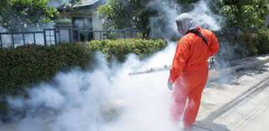 Pest Control and Fumigation Services in Nairobi,Kenya