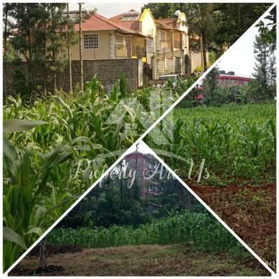 0.1 ha commercial land for sale in Kinoo image 1