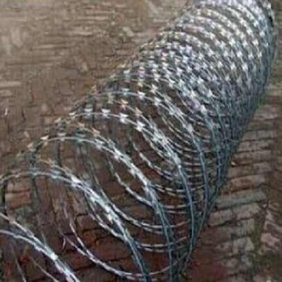 galvanized razor wire image 1