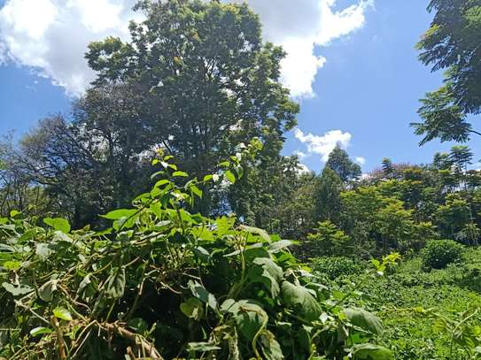 residential land for sale in Rosslyn image 2