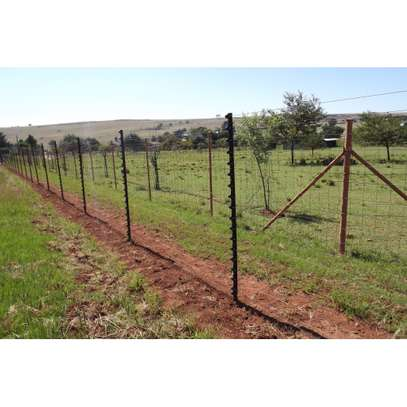 Electric Fence And Razor Wire Installation image 3