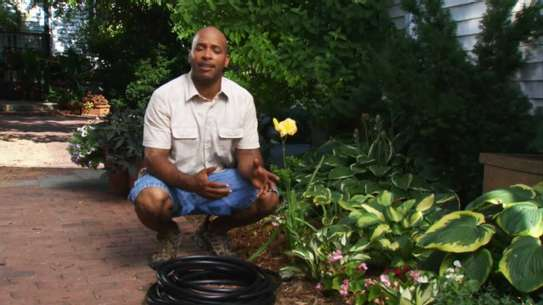 Best Gardening & Lawn Mowing Services|Contact Us Today. image 3
