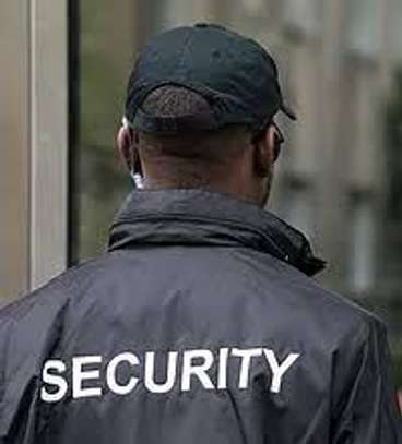 Personal/Executive Protection Services image 1