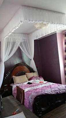 Ceiling mounted mosquito nets opens like curtains image 1