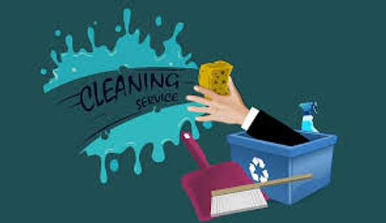 Clean Maids Home Cleaning Services image 8