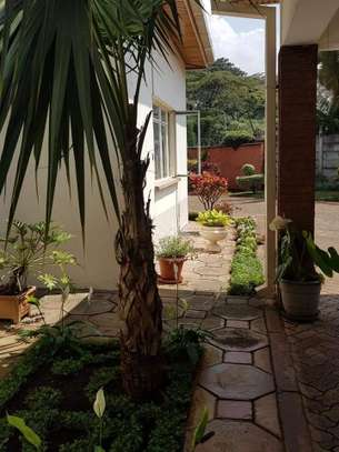 4 bedroom house for rent in Old Muthaiga image 10