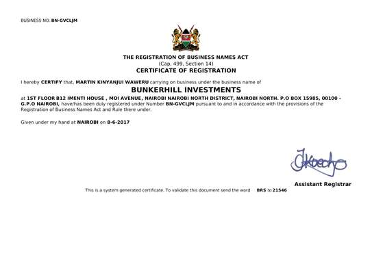 Bunkerhill investments image 2