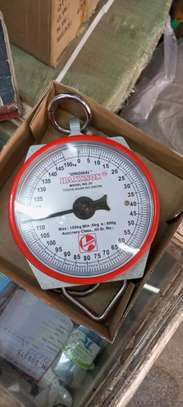Hanson 150kg Weighing Scale image 1