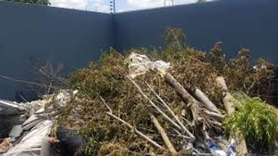Tree cutting & Site Clearance -Free Quotes image 11