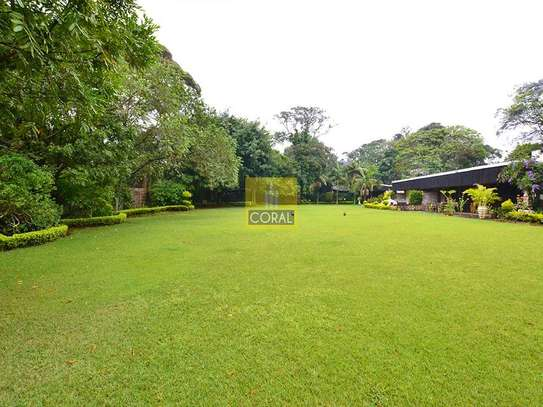 Muthaiga Area - House, Bungalow image 10