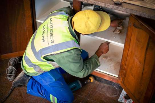Need A Reliable Handyman,  Plumber, Housekeeper,Gardener, Electrician,  Painter,  Pest Control or  House Maid? image 8