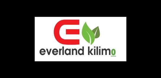Everland Kilimo image 1