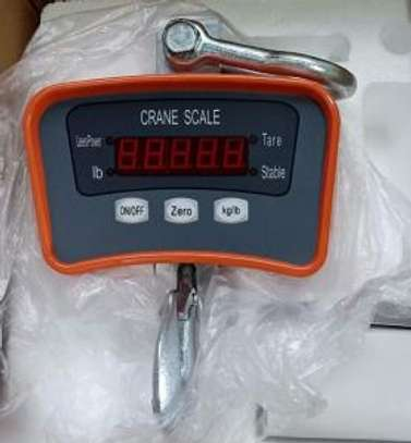 500kg  weight manual hanging weight crane scale image 1