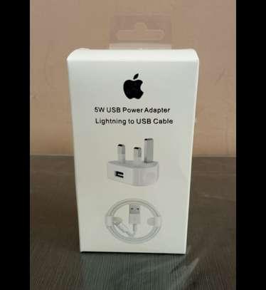 Original iPhone Charger image 1