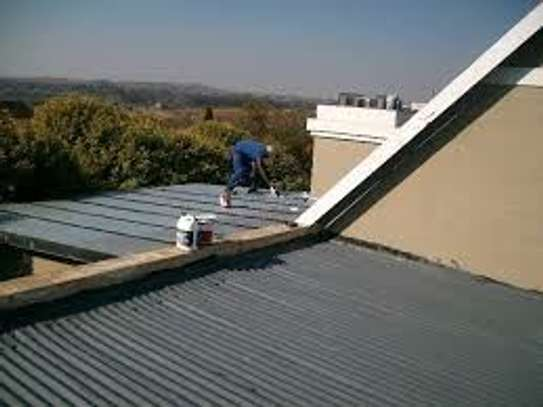 Painting and Waterproofing image 1