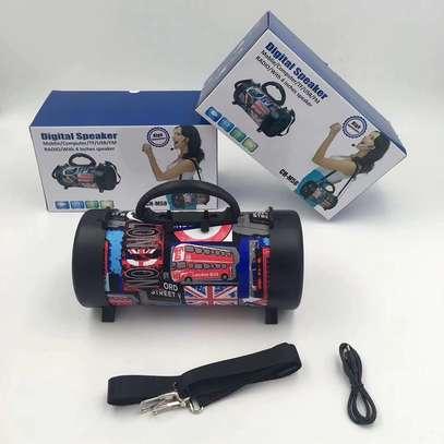 Bluetooth Speaker Outdoor With Shoulder Belt image 7