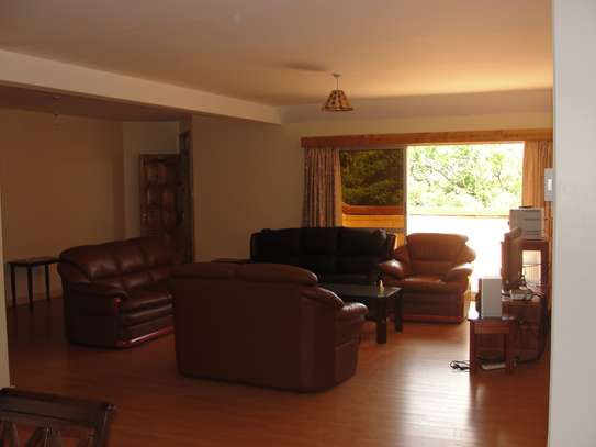 Furnished 3 bedroom apartment for rent in Brookside image 12