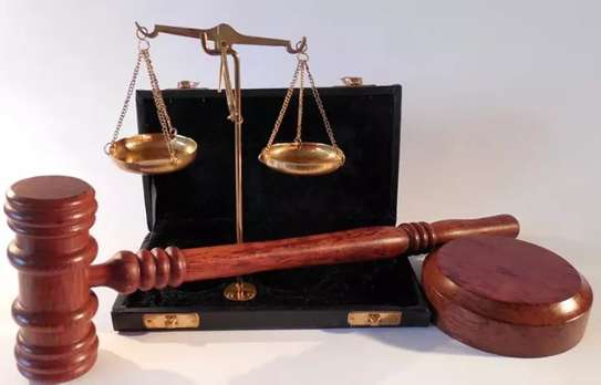 Law/Legal advocacy services